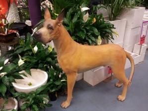 Fibreglass great dane dog statue