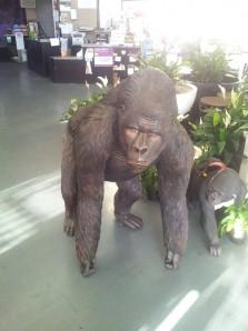 Fibreglass Gorilla statue